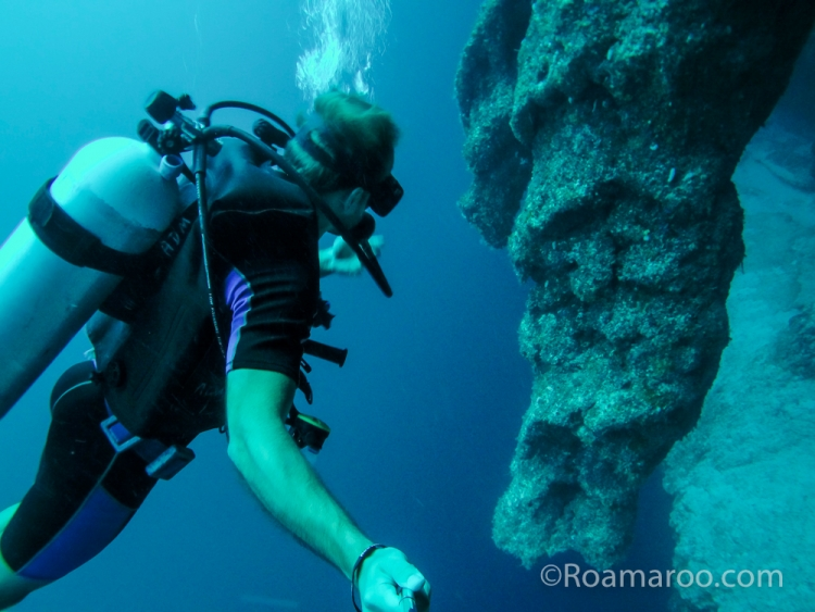 Consider, that Great blue hole belize diving congratulate, your